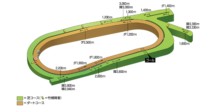 天気 東京 競馬 場