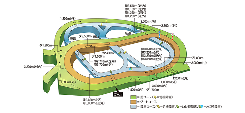 549dcf0089c1 コース紹介:中山競馬場 JRA