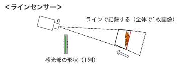決勝写真撮影カメラ(競馬用語辞典) JRA